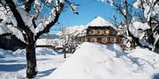 Wälderhaus im Schnee in Schopernau 2.1.jpg