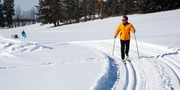 cross-country-skiing-624253_1920.jpg